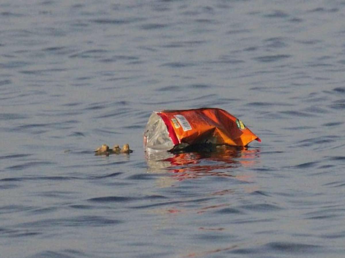 waste on the ocean